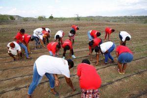 Sur Futuro concluye proyecto en Tamayo