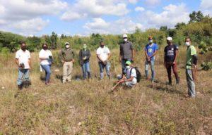 ISM Junto a EcoRed y Jardín Botánico realizan jornada de reforestación de roblillo